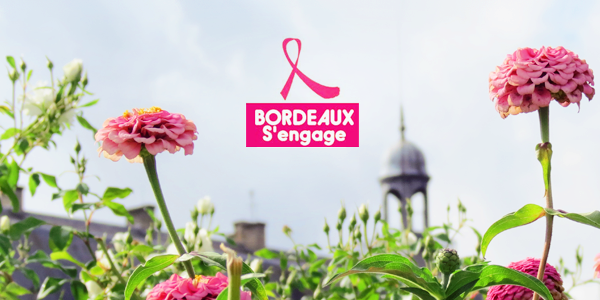 Octobre Rose à Bordeaux - Gironde 2013