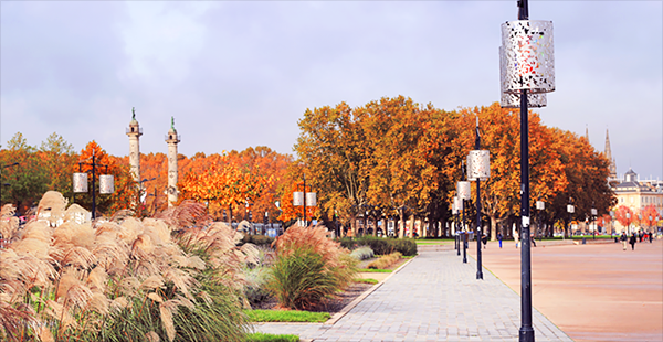 30-choses-a-faire-a-bordeaux-en-automne-01